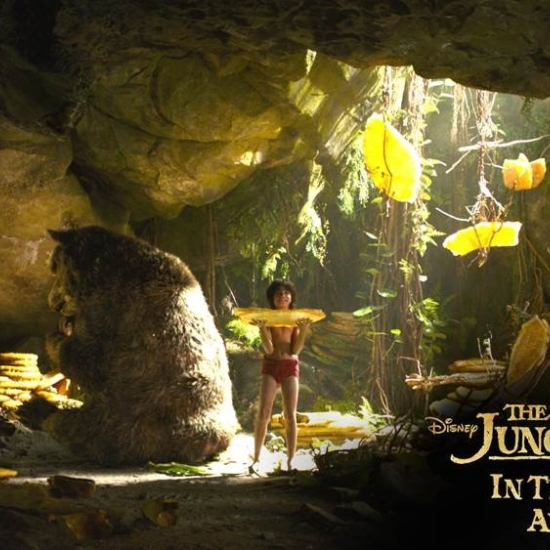 Disney The Jungle Book Honey Cave Image
